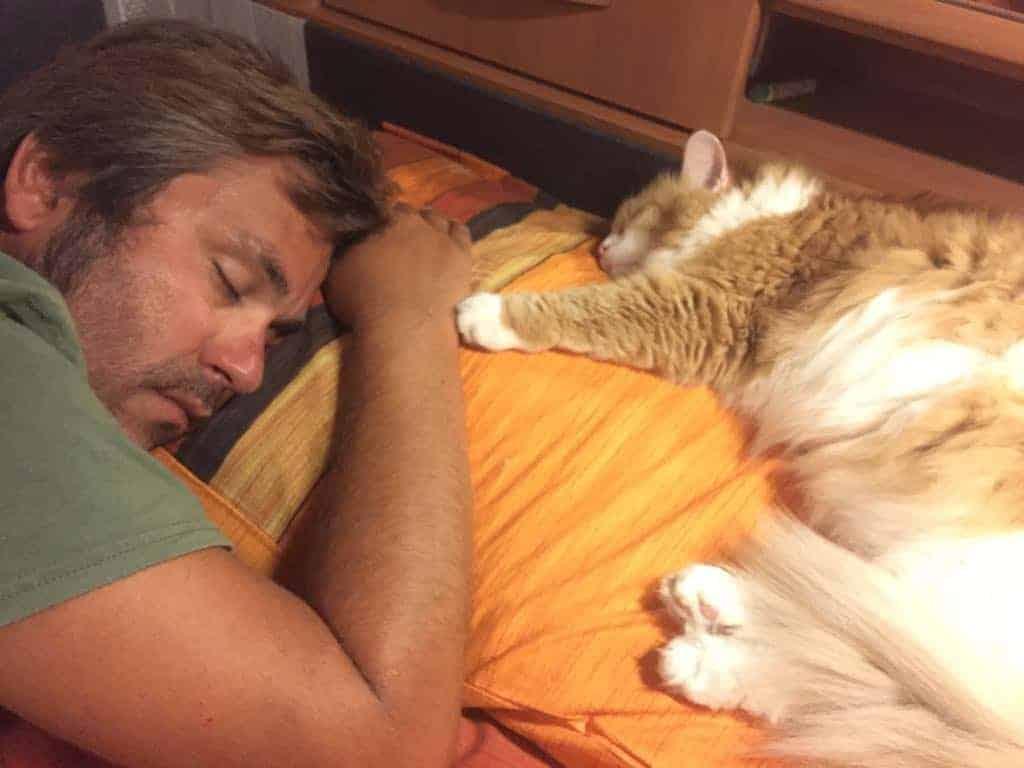 Stefano e Ginger che dormono