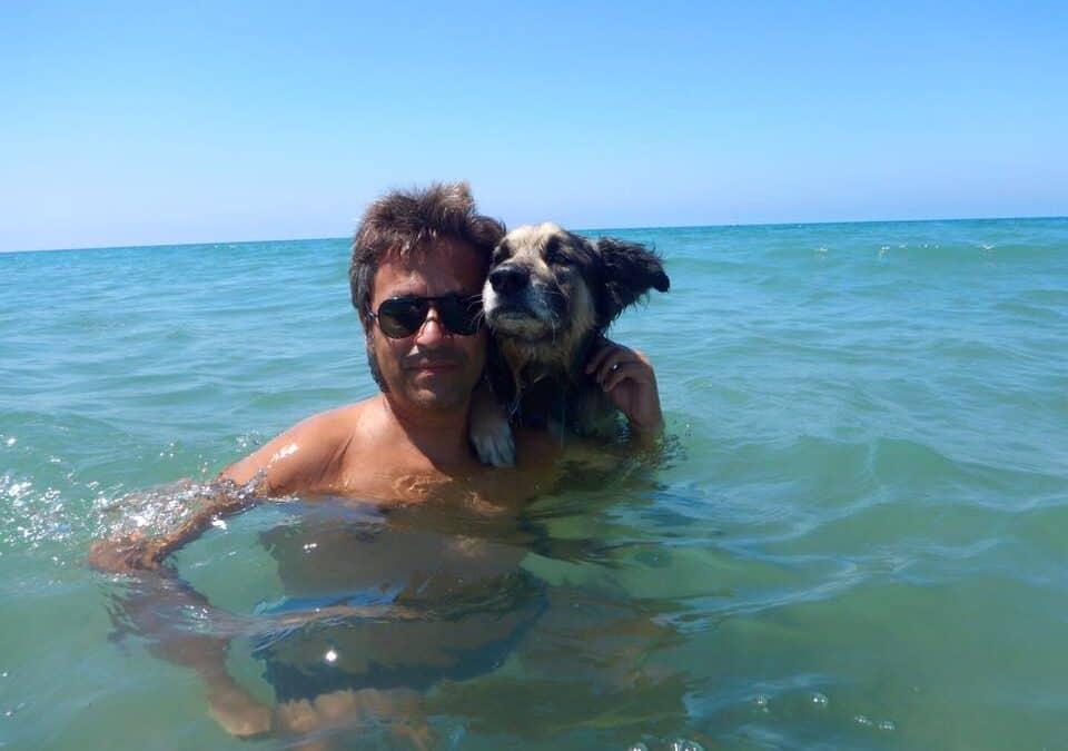 I cani e il nuoto: 5 benefici